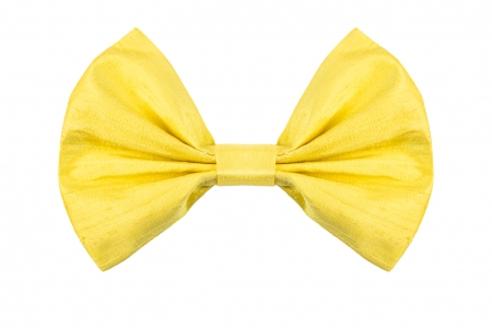 Bow in Mimosa Yellow